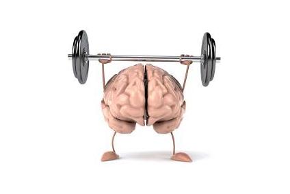 Cervello – FOGLIO ILLUSTRATIVO: INFORMAZIONI PER L'UTILIZZATORE
