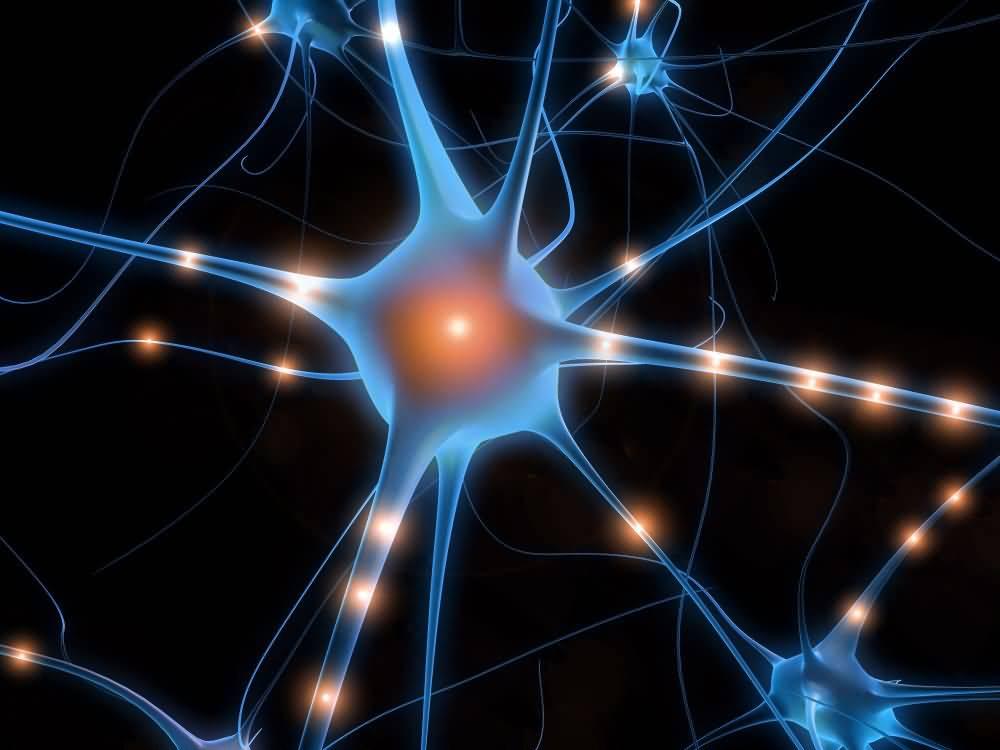 E' possibile aumentare l'hard disk del cervello?