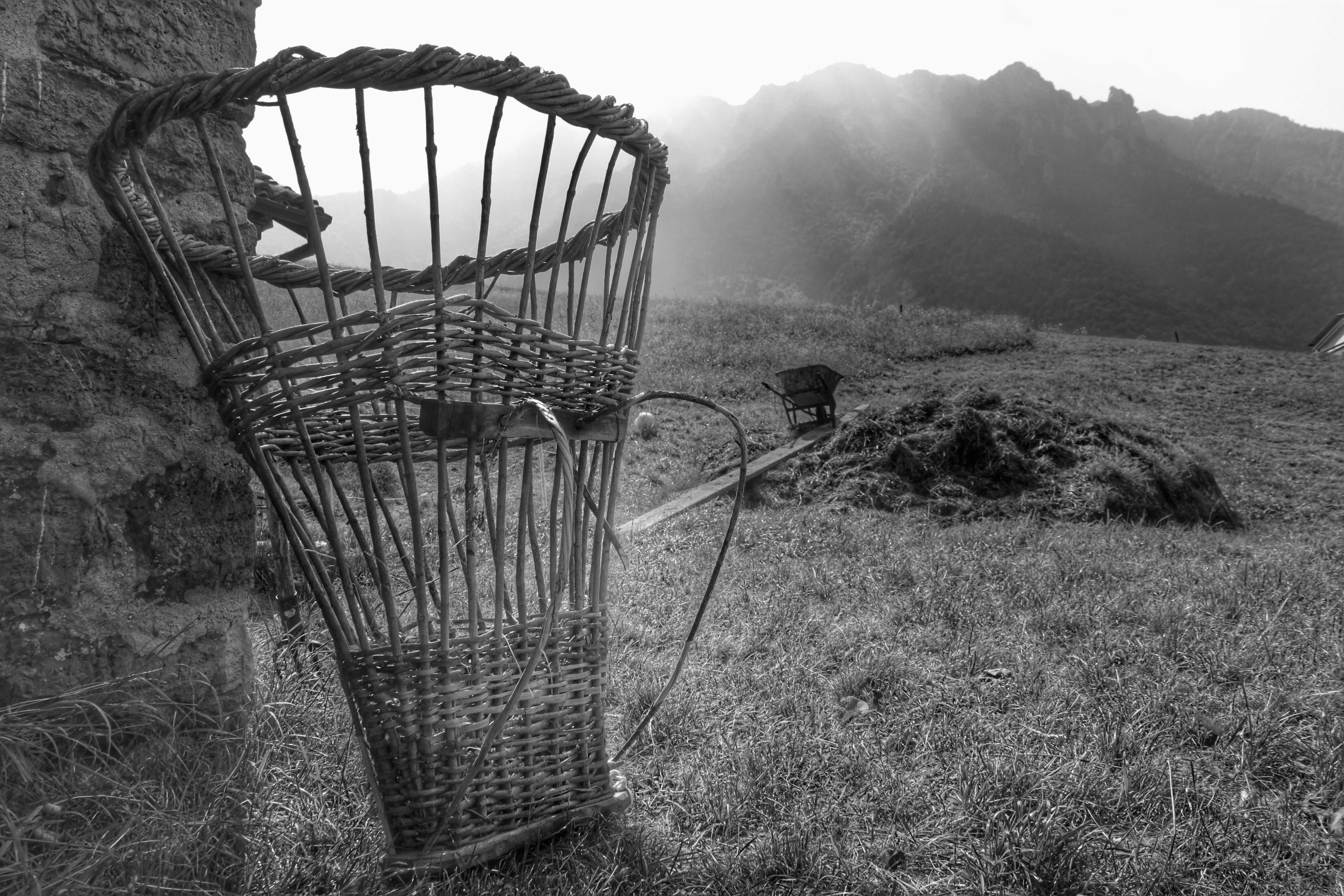 """Riabilitazione e fotografia: uno """"scatto"""" degli ospiti dell'RSD si classifica al secondo posto al Concorso fotografico """"La vita agricola"""" di Serina."""