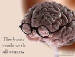 Le regole del cervello: ricordare per immagini
