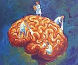 """Perché i """"castighi"""" non servono: dal sito  www.dana.org  approfondimenti sulla """"motivazione"""" all'apprendimento."""