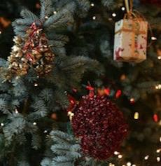 Buon Natale e un Sereno Anno Nuovo