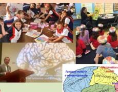 Quelle 5 cose da fare per la salute del nostro Cervello