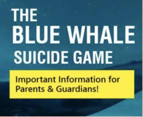 """Cos'è """"Blue Whale""""?"""
