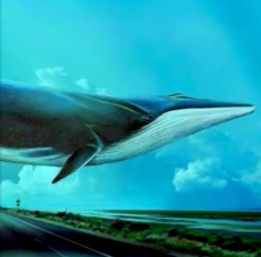 """Adolescenza e """"Blue Whale"""": parliamone ancora."""