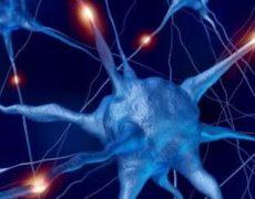Alzheimer: la ricerca continua
