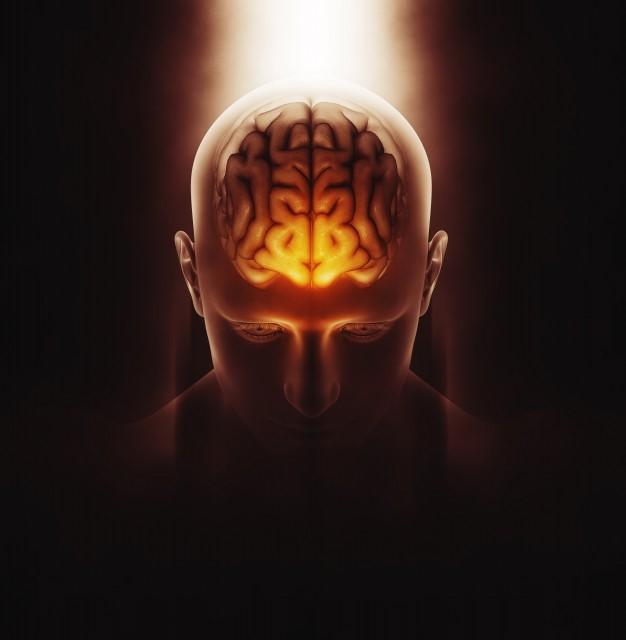 Alzheimer e demenza: che cosa fare?